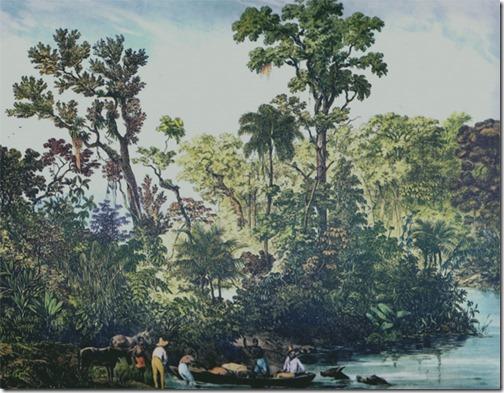 """Rio Paraíba do Sul (""""Rio Parahyba"""" / Paraíba do Sul  River), ca. 1835, Johann Moritz Rugendas"""